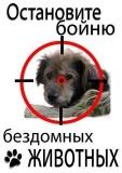 Учесть позицию зоозащитников и МИД при разработке закона «Об обращении с животными»!