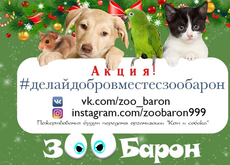 «Делай добро вместе с «ЗооБарон»»