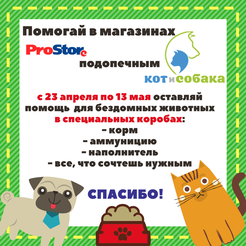 """Помогай подопечным ООЗЖ """"КиС"""" вместе с ProStore"""